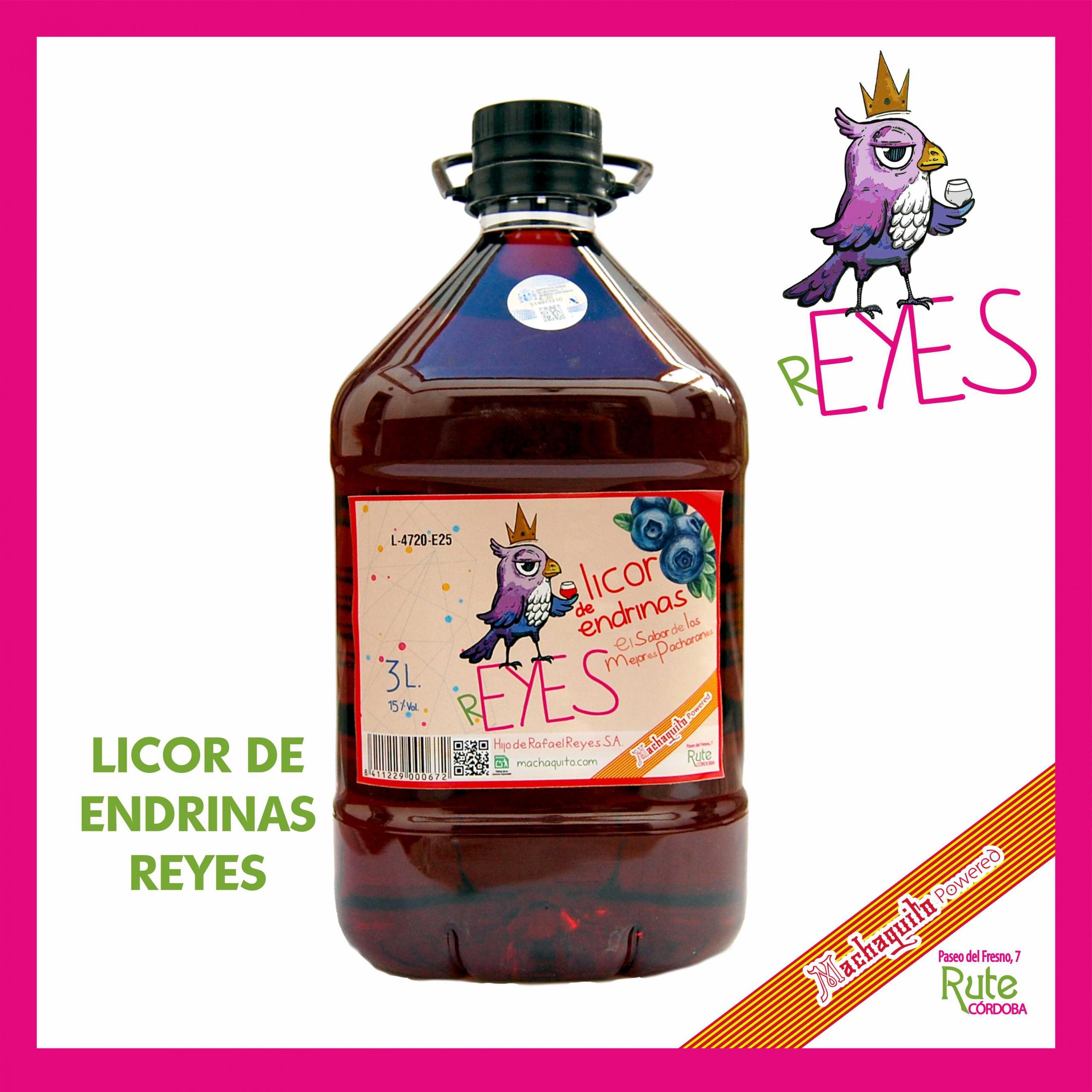 LICOR DE ENDRINAS 3